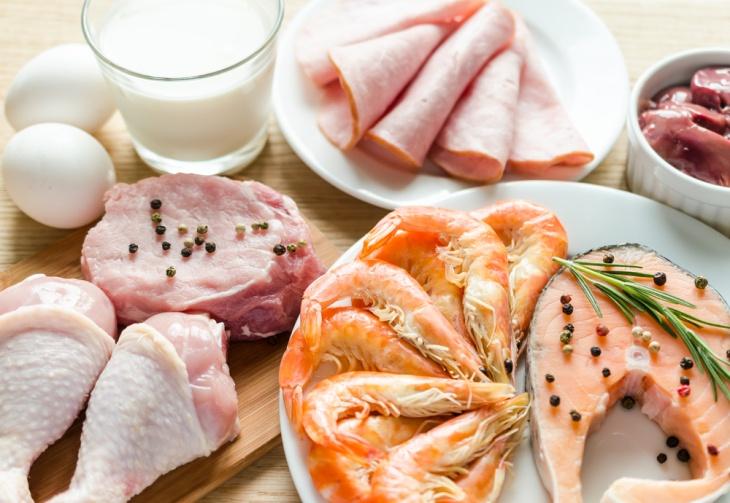 Усвоение белка из разных источников